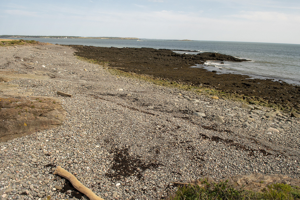 Waterfront Property / Vacant Land For Sale on Grand Manan Island, NB