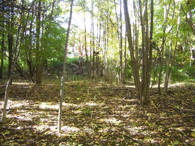 Vacant Land / Recreational Property For Sale in Blue Mountains, ON