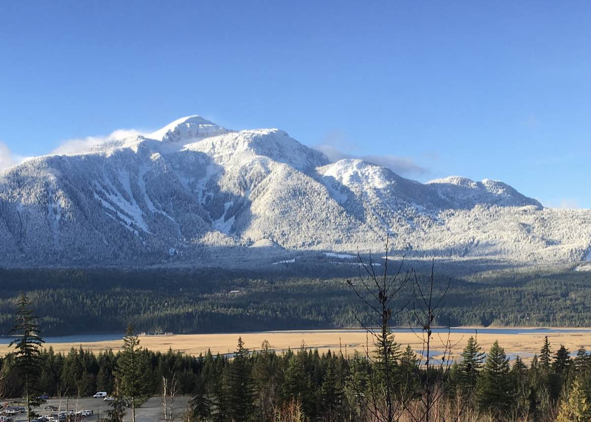 Vacant Land / Recreational Property For Sale in Revelstoke, BC