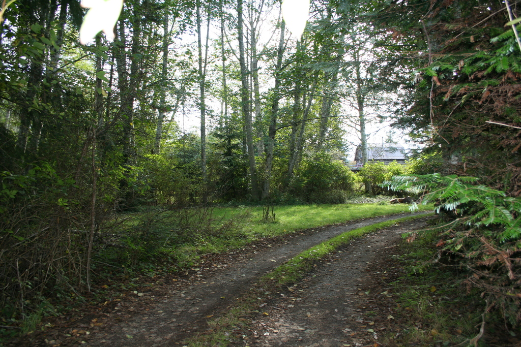 Acreage / Building Lot / Business with Property / Cottage / Detached House For Sale in Qualicum Beach, BC - 3+5 bed, 2 bath