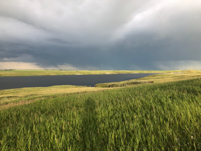 Acreage / Ranch / Recreational Property / Vacant Land For Sale in Stavley, AB