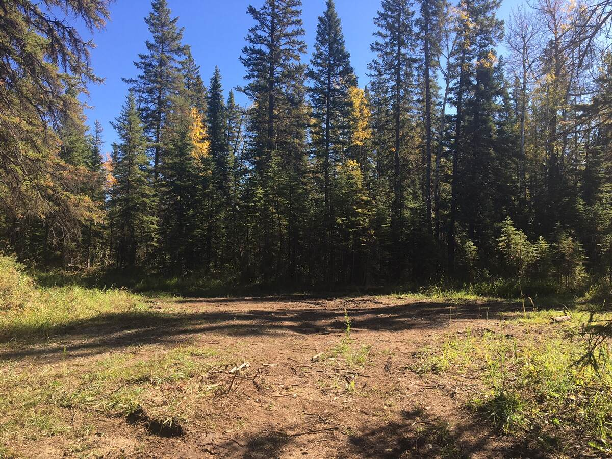 Land / Acreage / Building Lot / Empty Lot For Sale in Sundre, AB