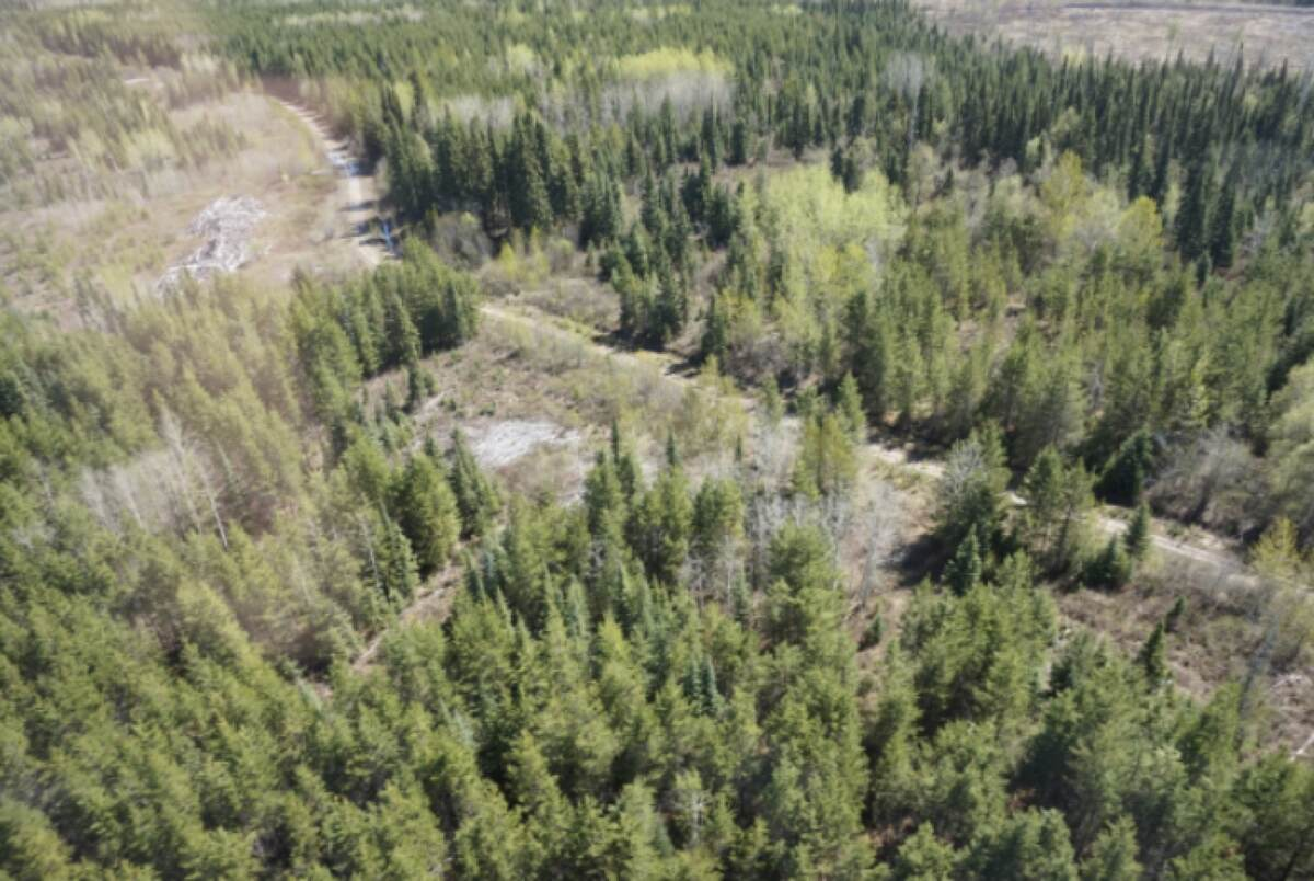 Vacant Land / Acreage / Farm For Sale in Prince George, BC