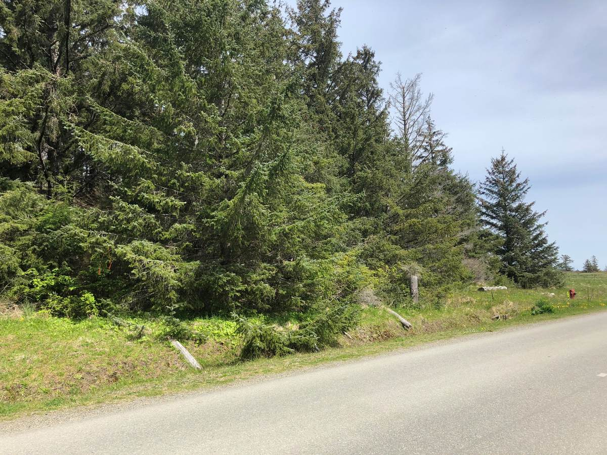 Acreage / Golf Course View / Land For Sale in Sandspit, BC