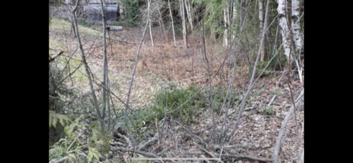 Vacant Land For Sale in Shuswap Lake, BC