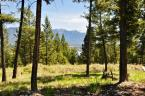 Empty Lot / Building Lot / Land / Recreational Property For Sale in Invermere, BC - 0 bdrm, 0 bath (2609 Lakeview Rise)