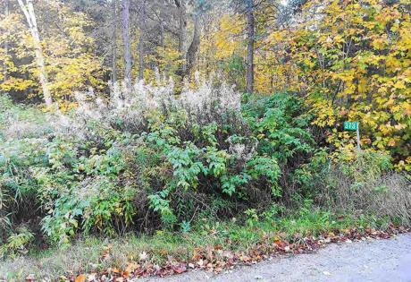 Land / Acreage / Building Lot / Quarry For Sale in Burk's Falls, ON - 0 bdrm, 0 bath (373 Spring Hill Road)