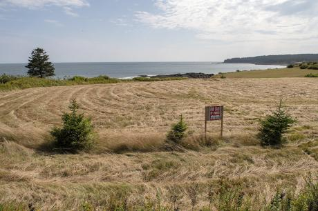 Waterfront Property / Building Lot / Empty Lot / Land For Sale on Grand Manan Island, NB - 0 bdrm, 0 bath (2341 Route 776)