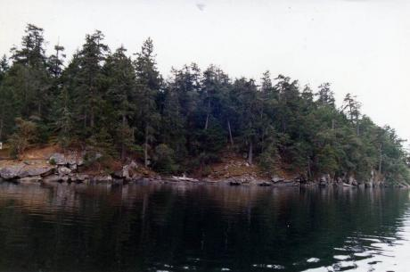 Recreational Property / Acreage / Cottage / Waterfront Property For Sale on DeCourcy Island, BC - 1 bdrm, 0 bath (149 Link Bay Rd)