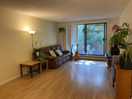 Apartment / Condo For Sale in Surrey, BC - 2 bdrm, 1 bath (411, 10680 - 151a Street)