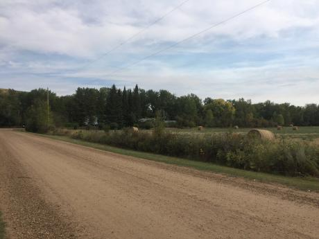 Acreage / Building Lot / Empty Lot For Sale in Rosedale Station, AB - 0 bdrm, 0 bath (117 Pinter Drive)