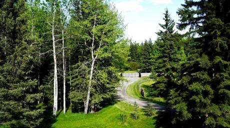 Land / Acreage For Sale in Bragg Creek, AB - 0 bdrm, 0 bath (215 Wintergreen Rd - W:5 R:5 T:23 S:13 Q:E)