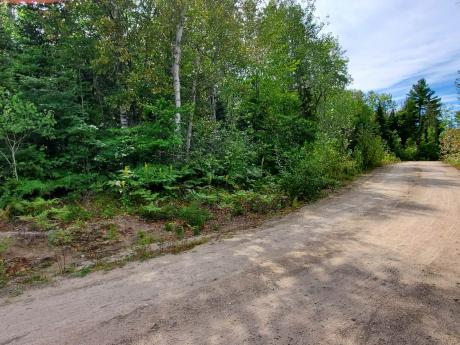 Land / Acreage / Empty Lot / Recreational Property For Sale in South River, ON - 0 bdrm, 0 bath (521 Airport Rd)