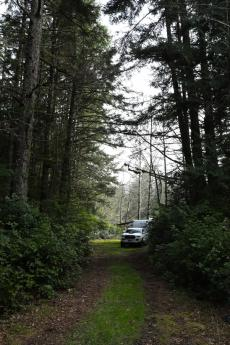 Acreage / Building Lot / Land / Recreational Property / Waterfront Property For Sale in Masset, BC - 0 bdrm, 0 bath (Lot 8, Limber Lost Place)