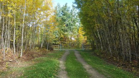 Vacant Land / Acreage / Farm / Recreational Property For Sale in Camrose County, AB - 0 bdrm, 0 bath (49535 Rge Rd 202)