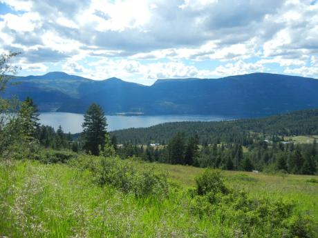 Acreage / Land For Sale in Lake Country, BC - 0 bdrm, 0 bath (Lot 3,Pl. Kap32474, Sec.22,  Odyd)