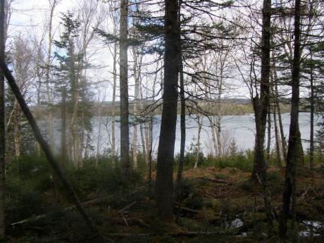Waterfront Property / Land For Sale on Cape Breton Island, NS - 0 bdrm, 0 bath (Lot 13 Torus Drive)