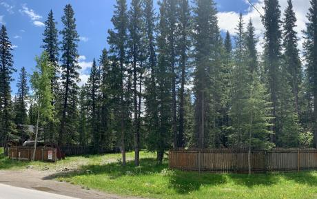 Empty Lot / Building Lot / Land For Sale in Bragg Creek, AB - 0 bdrm, 0 bath (67 White Ave)