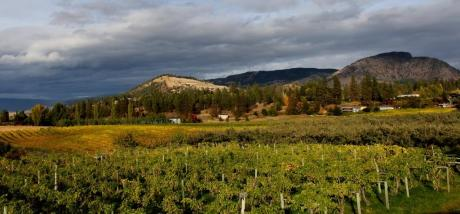 Land with Building(s) / Acreage / Business with Property / Farm For Sale in Kelowna, BC - 4 bdrm, 2 bath (2270 Garner Rd)