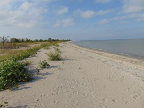 Waterfront Property / Acreage / Land with Building(s) For Sale in Silver Ridge, MB - 0 bdrm, 0 bath (Box 37 Silver Ridge)