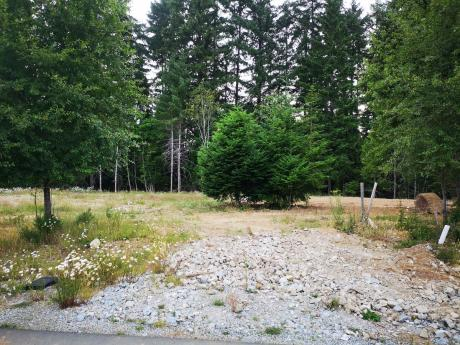 Building Lot / Empty Lot / Land For Sale in Port Alberni, BC - 0 bdrm, 0 bath (126, 4065 McBride Street)