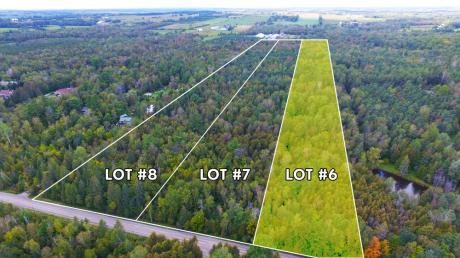 Land / Acreage / Empty Lot / Farm / Recreational Property For Sale in Uxbridge, ON - 0 bdrm, 0 bath (Regional Rd 12 Con 2 S PT Lot 4 Pcl 6)
