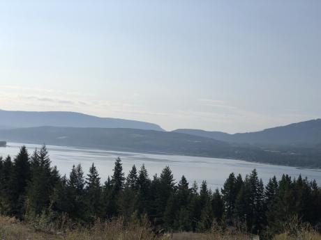 Acreage / Waterfront Property For Sale in Scotch Creek, BC - 0 bdrm, 0 bath (1353 Lee Creek Drive)