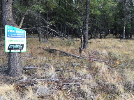 Building Lot / Empty Lot / Land For Sale in Cranbrook, BC - 0 bdrm, 0 bath (3516 Mount Royal Drive)